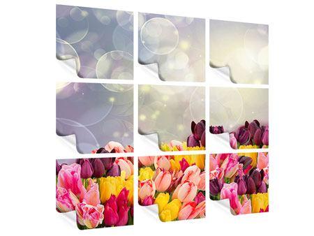 Poster 9-teilig Buntes Tulpenbeet im Lichtspiel