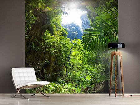 Photo Wallpaper Clearing In The Jungle